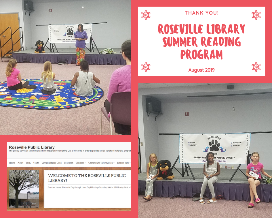 Roseville Library Summer Reading Program Aug. 2019